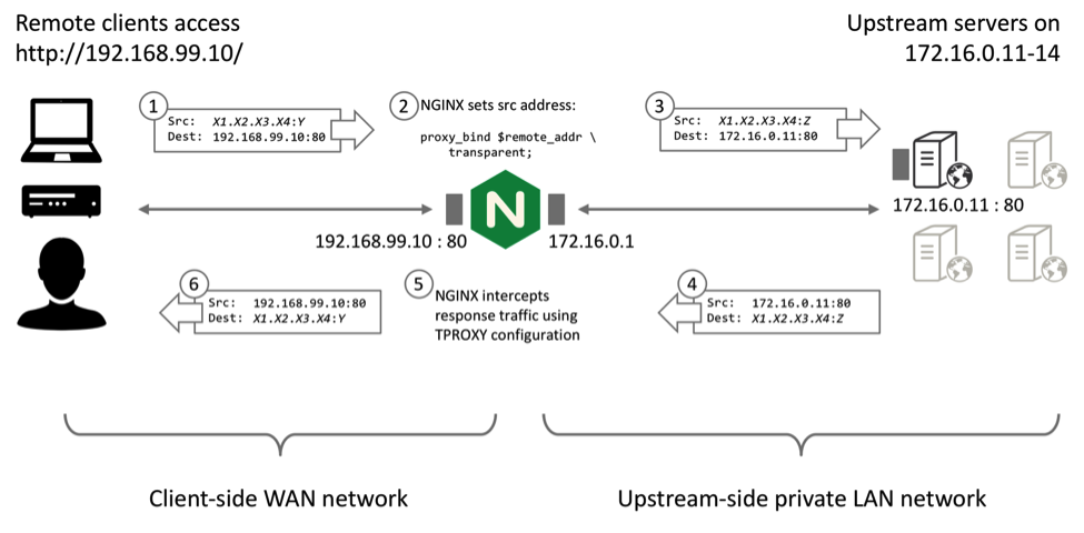 Nginx proxy ip header
