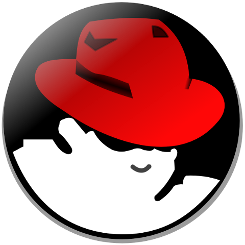 Red Hat is a supported distribution for NGINX Plus.