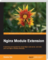 Image of Nginx Module Extension