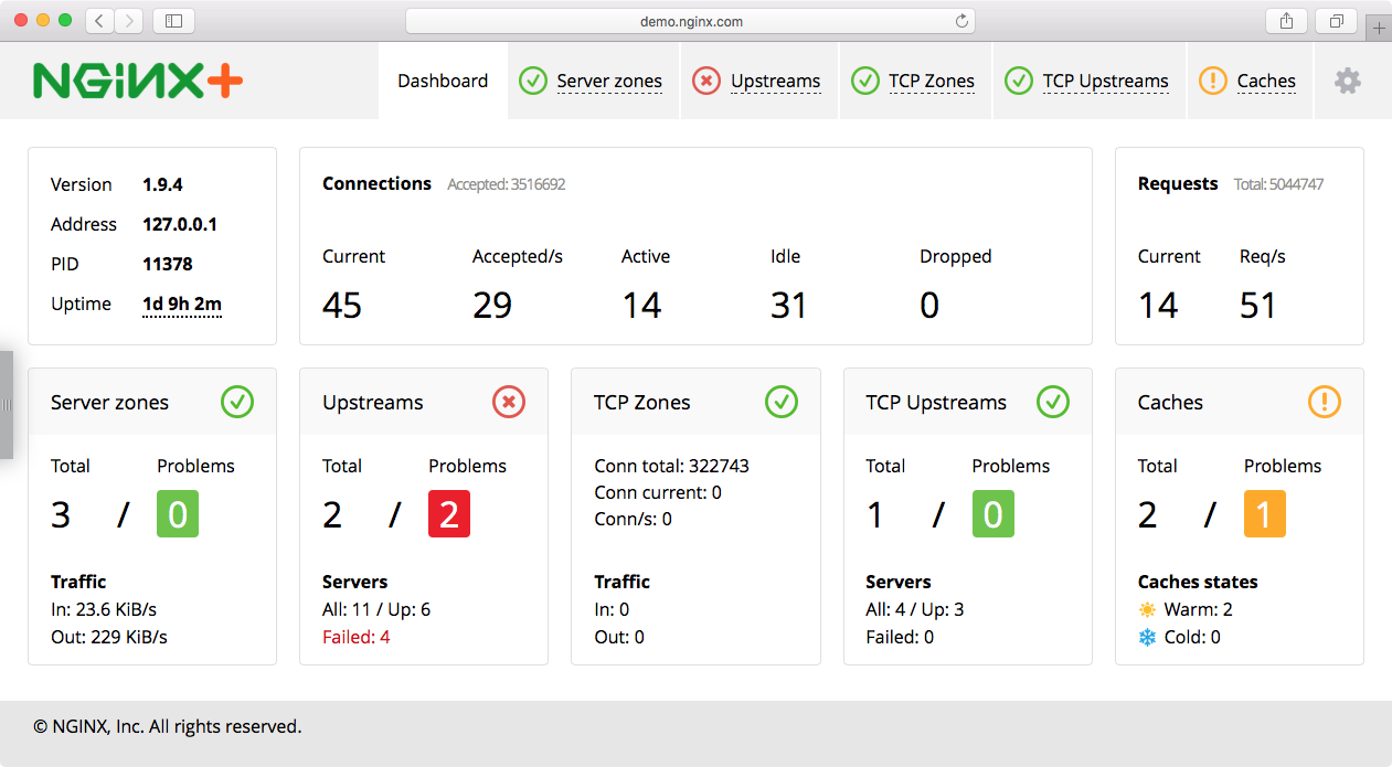 NGINX plus live activity monitoring dashboard image
