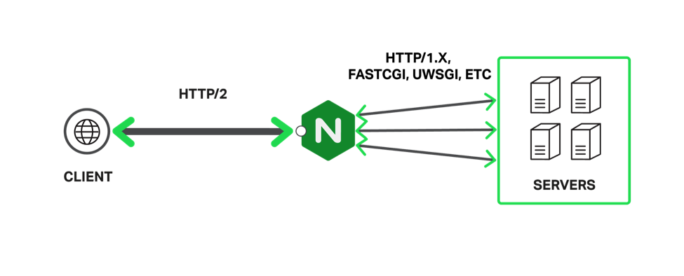 Graphic showing how NGINX Plus terminates HTTP/2 connections from clients and uses unencrypted connections to local backend servers, as part of an overall strategy to improve SEO results