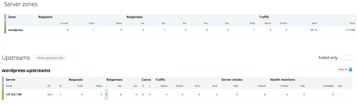 NGINX Plus dashboard before running the ab benchmark of microcaching