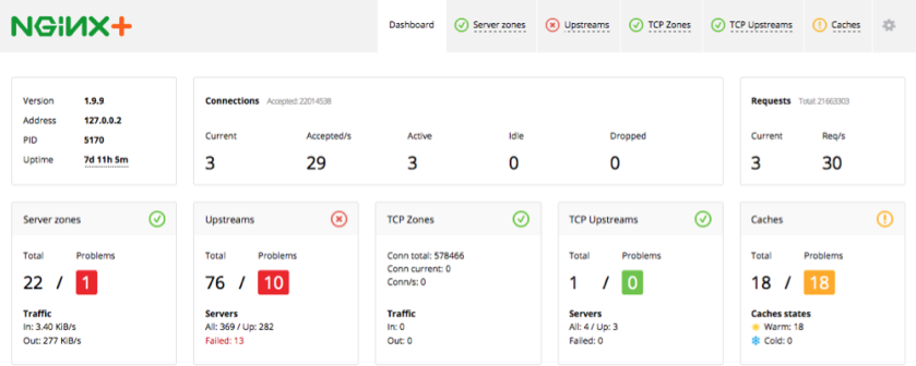 Dashboard tab in NGINX Plus live activity monitoring dashboard