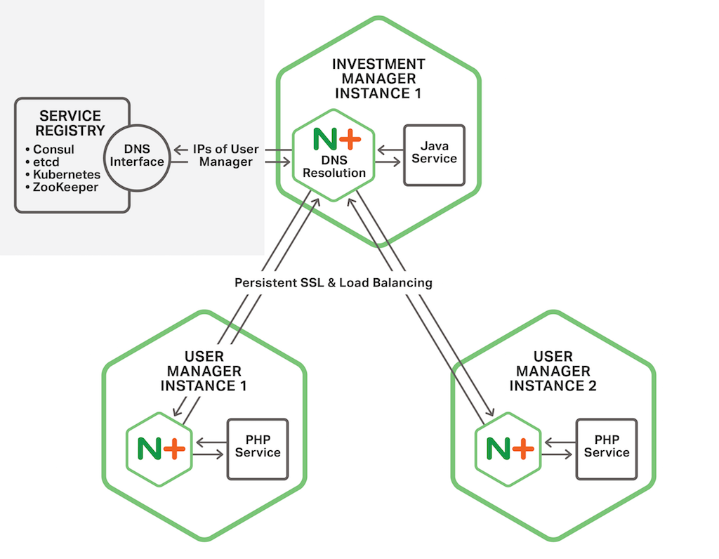 In the Fabric Model of the NGINX Microservices Reference Architecture, the NGINX Plus instance colocated with a microservice in a container establishes persistent SSL/TLS connections to NGINX Plus instances colocated with microservices in other containers, in support of communication between the microservices