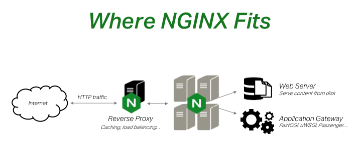 NGINX and NGINX Plus function not only as web servers, but as reverse proxy servers that do software-based load balancing and caching, and also API gateways