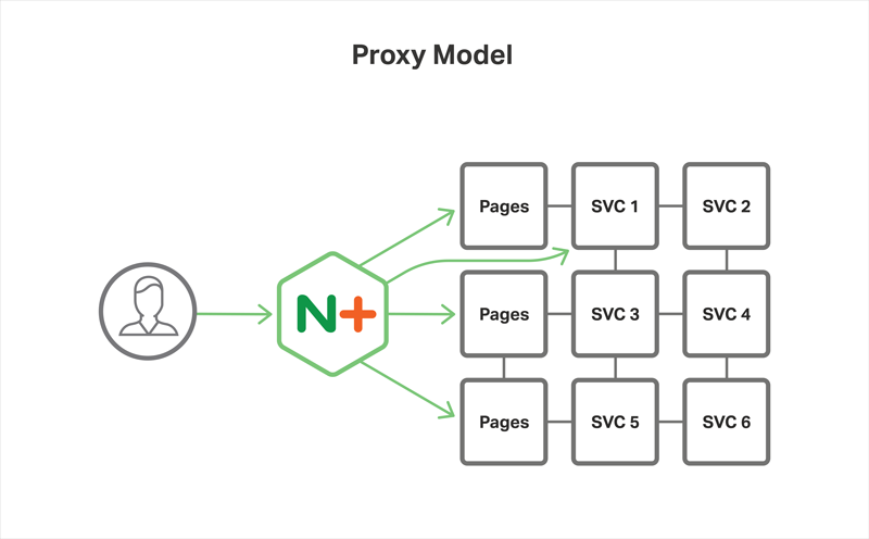 In the Proxy Model of the Microservices Reference Architecture from NGINX, NGINX Plus acts as a reverse proxy server and ingress controller for the microservice instances of an application